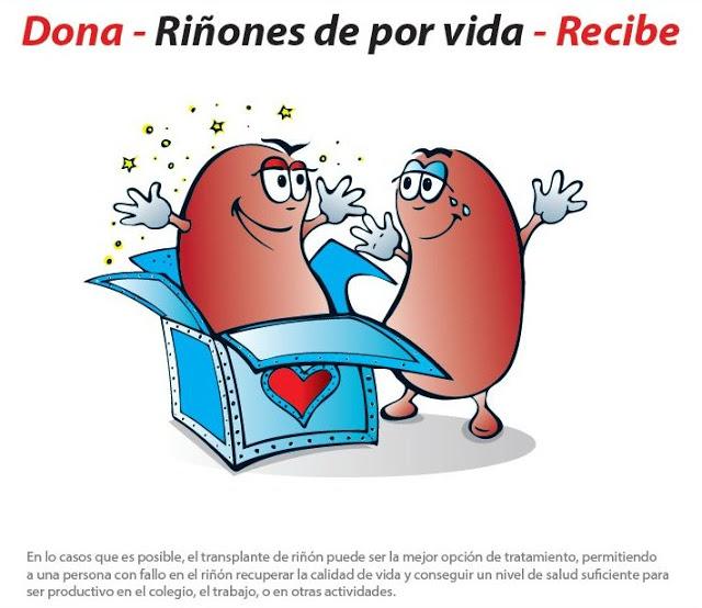Resultado de imagen para Donar  riñones